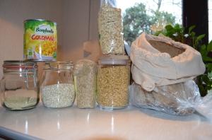 grains week one